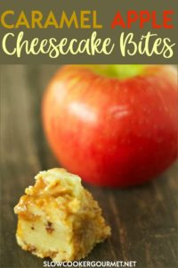 Whether you have freshly picked apples from an orchard, or they are freshly picked apples from the grocery store these delicious and rich treats can be enjoyed year round.  From the cookie layer to the cheesecake filling and caramel apple topping, these tasty treats are a winner! #slowcookergourmet #caramel #apple #caramelapple #cheesecake #bites #slowcooker