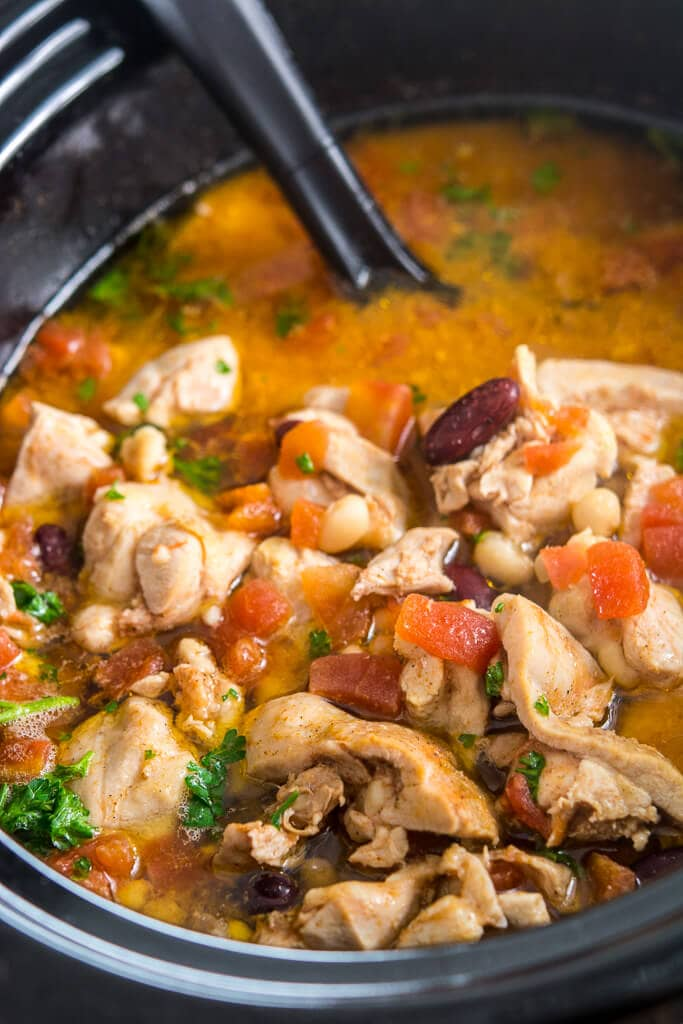 Slow Cooker Spicy Chicken Stew