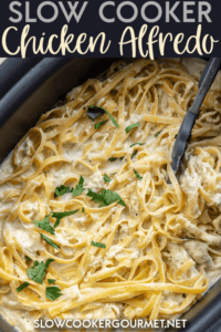 Better than what you can get at most restaurants and it comes out of your slow cooker! This Slow Cooker Chicken Alfredo Pasta is a family favorite dinner recipe! #slowcookergourmet #alfredo #chickenrecipe #pasta #slowcookerrecipe
