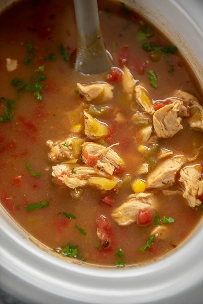 slow cooker with spicy chicken soup
