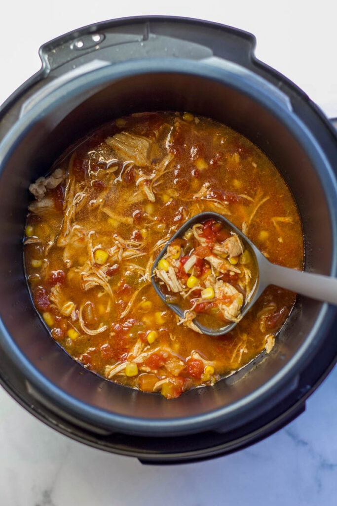 spicy chicken soup in Instant Pot