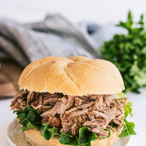 pulled pork sandwich on a plate